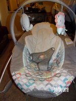 Ingenuity SmartBounce Automatic Bouncer - Candler, Grey uploaded by Shauna C.