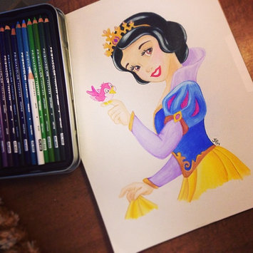 Photo of Sanford Prismacolor Premier Colored Pencils Set uploaded by Jessica P.