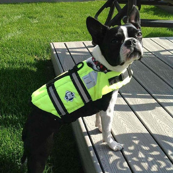 Photo of Paws Aboard Neon Yellow Doggy Life Jacket uploaded by Tara K.