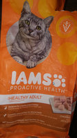Iams Proactive Health Indoor Weight & Hairball Care Formula uploaded by Kaitlyn S.