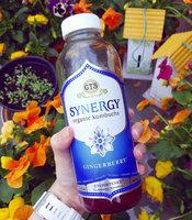GT's Raw Organic Kombucha Gingerberry uploaded by Sandra D.