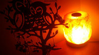 WBM # 1004 Natural Air Purifying Himalayan Salt Lamp With Neem Wood uploaded by Forrest Jamie S.