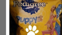 Pedigree® Puppy Targeted Nutrition Dry Dog Food 16.3 lb. Bag uploaded by Maria Juliana R.