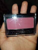 Colormates Blush & Brush Blushed Pack of 4 uploaded by Lidia R.