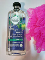 Herbal Essences Micellar Water & Blue Ginger Shampoo uploaded by Lorna W.
