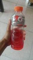 Gatorade® Foods 24121 Fruit Punch uploaded by Birnalisis C.