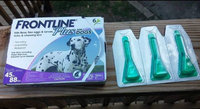 Frontline Plus for Dogs uploaded by Jennifer F.