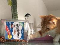 TEMPTATIONS™ Classic Treats For Cats Seafood Medley Cat Treats uploaded by Jennifer F.