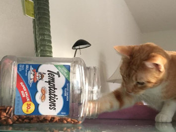 Photo of TEMPTATIONS™ Classic Treats For Cats Seafood Medley Cat Treats uploaded by Jennifer F.