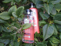 Herbal Essences White Grapefruit & Mosa Mint Conditioner uploaded by Marilyn B.