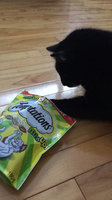 Tempations MixUps Surfers' Delight Treats for Cats uploaded by Rachel P.