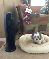 Honeywell QuietClean® Tower Air Purifier HFD140 uploaded by Nicole P.