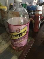 Schweppes® Raspberry Ginger Ale uploaded by Deborah M.