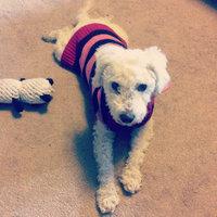 Purina Beyond Natural Dog Food Ranch Raised Lamb & Whole Barley Recipe uploaded by Vanessa C.