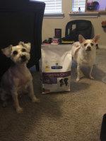 Hill's Prescription Diet i/d Low Fat Canine Digestive Care Chicken Formula Dry Dog Food uploaded by Demetria J.