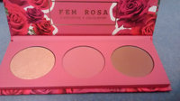 ColourPop - Fem Rosa Karrueche - Pressed Powder Cheek Palette - Her uploaded by Forrest Jamie S.