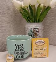 Twinings® Lemon & Ginger Herbal Tea uploaded by Ashley L.