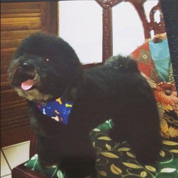 Photo of Nylabone Dura Chew Bone Dog Toy uploaded by Lillian R.