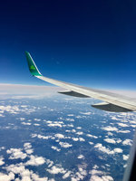 Aer Lingus Airline  uploaded by Dinah B.