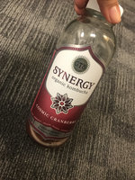 GT's Raw Organic Kombucha Cosmic Cranberry uploaded by Angymer D.