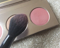 Disney's Beauty and the Beast Cheek Palette by LORAC, Multicolor uploaded by Angie D.