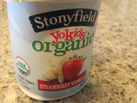 Stonyfield Organic YoKids Blueberry and Strawberry Vanilla Lowfat Yogurt - 6 PK uploaded by jill s.