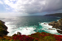 Ring of Kerry  uploaded by Dinah B.