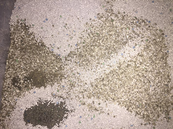 Photo of Tidy Cats Scoop 24/7 Performance Cat Litter uploaded by member-7871096cb
