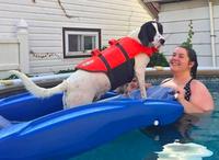 Outward Hound The Pet-Saver Lifejacket uploaded by valerie g.