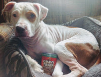 Gravy Train Chunks in Gravy with Chicken Chunks Wet Dog Food, 13.2-Ounce Can uploaded by Cheyenne H.