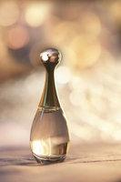 Christian Dior W-5080 Jadore LAbsolu - 2. 5 oz - EDP Spray uploaded by Arya A.