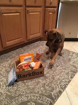 BarkBox uploaded by Jordan R.