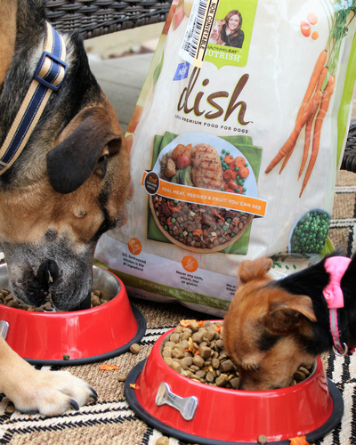 Nutrish DISH Natural Dry Dog Food, Chicken & Brown Rice Recipe with Veggies & Fruit, 23 lbs uploaded by Amber O.