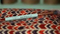 Elizabeth Mott Blending Brush uploaded by Anju S.