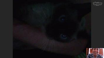 Skype  uploaded by Alejandra M.