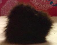 Lancôme Precision Cheek Brush #7 uploaded by Leslie B.