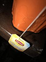 Lipton®  Iced Tea Bags uploaded by Sian S.