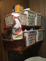 Shout® Trigger Triple-Acting Stain Remover uploaded by Pamela B.