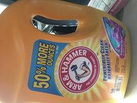 Arm & Hammer Clean Burst Liquid Laundry Detergent uploaded by Alessandra B.