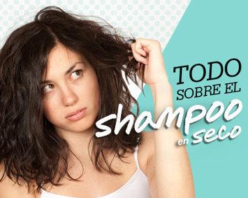 Pantene Dry Shampoo uploaded by Noyo G.