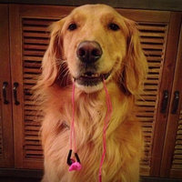 Yurbuds Inspire Pro for Women Earbuds - Pink (10139) uploaded by Bridgette J.