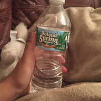 Poland Spring® Natural Spring Water uploaded by Luara R.
