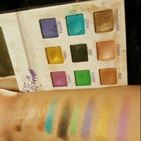 Urban Decay Deluxe Shadow Box uploaded by Kelly W.