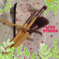 EcoTools 6 Piece Essential Eye Brush Set uploaded by Hira T.