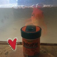 Tetra TetraFin Goldfish Crisps with Feeding Lid uploaded by Mélissa L.