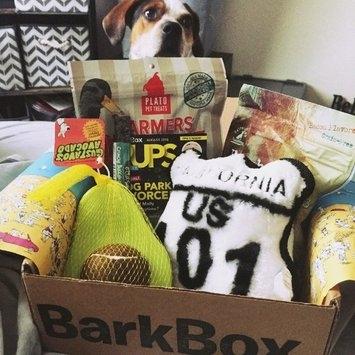BarkBox uploaded by Emily O.