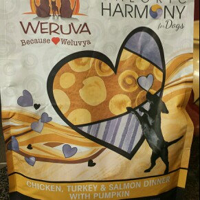 Photo of Weruva Caloric Harmony Grain Free Chicken Turkey and Salmon Dinner with Pumpkin Dry Dog Food uploaded by Shea L.