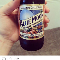 Blue Moon Seasonal Collection Harvest Pumpkin Ale uploaded by Shelby B.