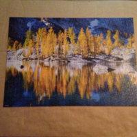 Mega Blocks Mega Brands 1011214 Vibrant 1000-Piece Puzzle - Tree Hall uploaded by Samantha A.