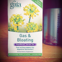 Gaia Herbs Gas & Bloating Herbal Tea uploaded by Donneisha D.